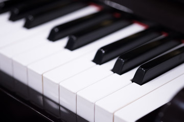 Side view of piano keys.