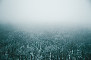 Aerial view of winter in fog, snow nature landscape with mist as winter background for design with copy space