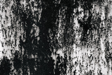 black and white texture of old boards. grunge