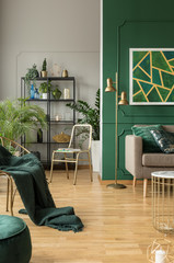 Emerald green interior with grey accents, urban jungle and fancy furniture