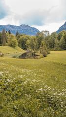 Smartphone HD Wallpaper of beautiful alpine view near castle Linderhof - Bavaria - Germany