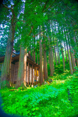 Shrine in Toyama, Japan. Japan is a country located in the East Asia.