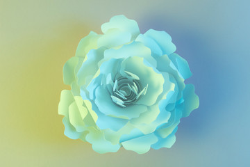White paper flower illuminated by blue and yellow light