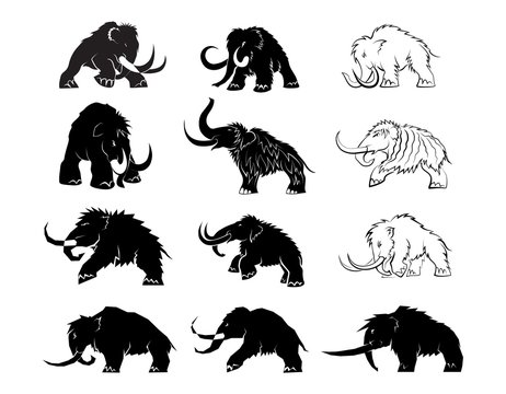 Set of black silhouettes of mammoths on a white background. Prehistoric animals of the ice age in various poses. Elements of nature and evolutionary development. Vector illustration.