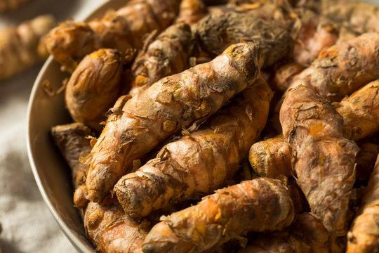 Raw Organic Orange Turmeric Root