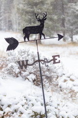 Wind Vane with a deer in the winter