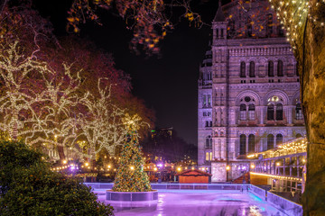Fotomurales - Skating rink near Natural history museum in London