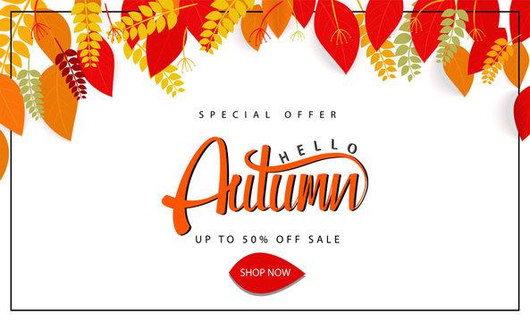 Autumn illustration Vector leaves Seasonal lettering.