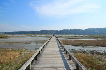 世界一長い木造歩道橋 蓬莱橋 静岡県島田市 日本