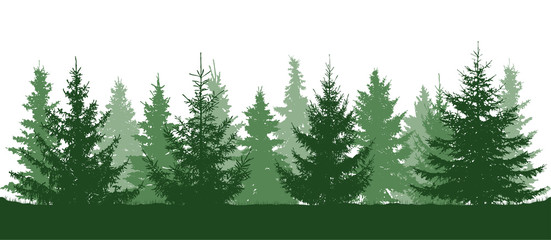 Green forest, fir trees silhouette. Isolated on white background. Vector illustration.