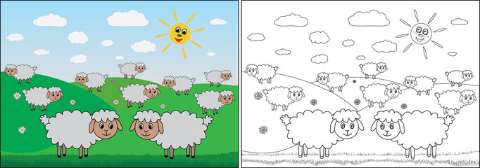 Coloring book for children. Sheep graze in the meadow, cartoon. Vector illustration.