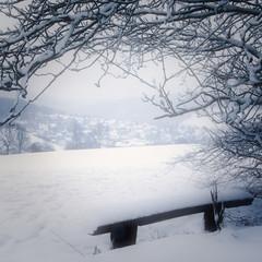 Winterlandschaft, quadratisch high key monochrom