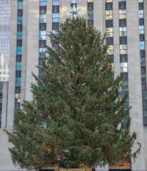Fototapete - Christmas tree in Manhattan. Rockefeller Center