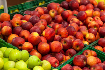 Beautiful, ripe, fresh fruits in a supermarket: green, yellow, red apples, placed in rows in a large assortment, a variety of choices.