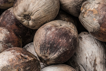 bunch of brown palm fruits a set of nuts a weather-beaten natural background a tropical base