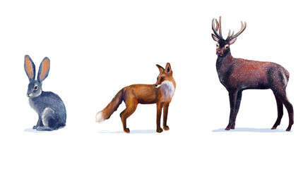 Illustrations of  fox, deer and hare on white background. Digital drawing
