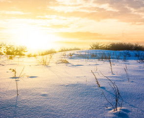 winter field in a snow at the sunset