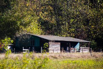 Einsame Hütte auf Feld
