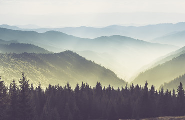 Photo sur Plexiglas Colline Majestic landscape of summer mountains. A view of the misty slopes of the mountains in the distance. Morning misty coniferous forest hills in fog and rays of sunlight.Travel background.