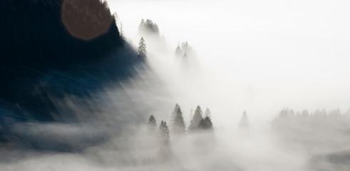 Berg und Wald in Nebel getaucht