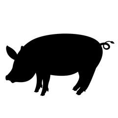 pig  vector illustration , black silhouette ,profile