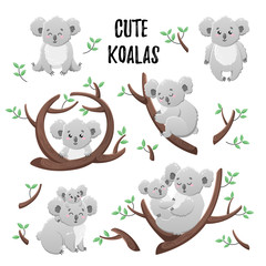 Collection of cute cartoon koalas. Set of vector stickers. Doodle icons. Template for design, print, textile.