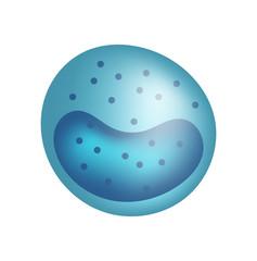 Monocyte. Vector illustration. Blood cell