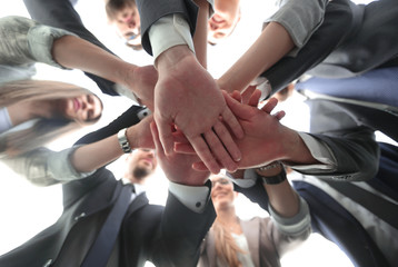 bottom view.the business team shows its unity