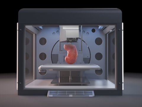 Illustration of a 3d printer printing a kidney
