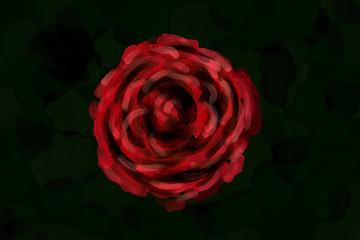 Watercolor like rose illustration.