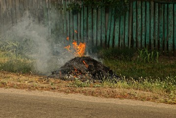 a big bonfire on the street in the green grass by the road
