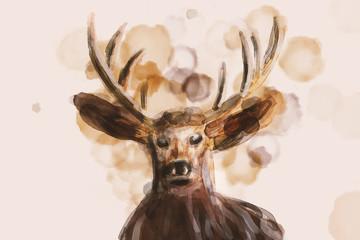 Watercolor illustration like portrait of a Deer.