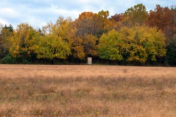 A little redneck hunting shack nestled amongst the fall trees.