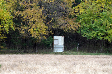 A redneck hunting shack hidden amongst trees on a fall day.