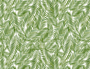 Tropical palm leaves, jungle leaf seamless  floral pattern background
