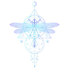Vector illustration with hand drawn dragonfly and Sacred geometric symbol on white background. Abstract mystic sign.