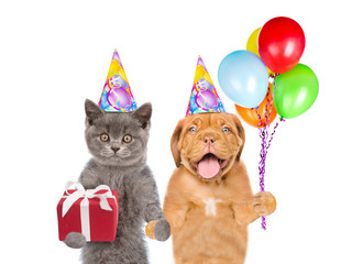 Cat and Dog in party hat holding balloons and gift box. isolated on white background