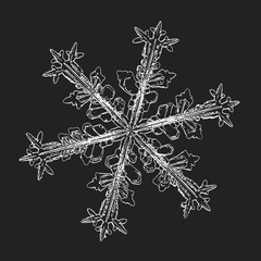 Snowflake isolated on black background. Vector illustration based on macro photo of real snow crystal: beautiful stellar dendrite with beautiful elegant arms, complex ornate shape and glowing contour.