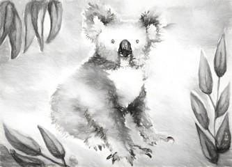 koala bear watercolor illustration