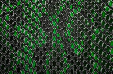 Wall Mural - Green snake skin background
