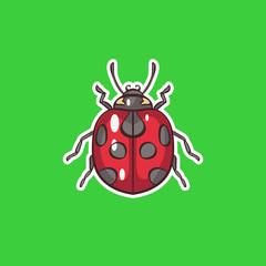 Ladybug. illustration in vector