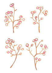 Set of four small branches with cute pale pink berries. Nature illustration painted in watercolor on clean white background