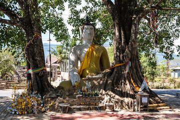 Laos - Fahrt vom Wat Phou nach Nakasong