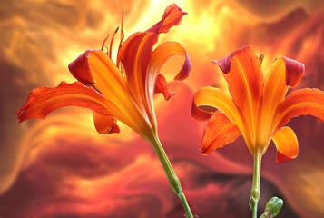 Lilien mit Textur
