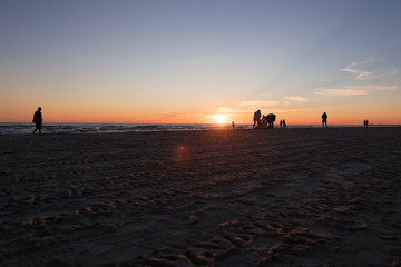 Walking people on the beach during sunset