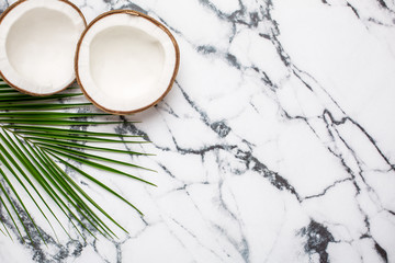 Tropical coconut and palm tree on marble background