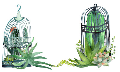 Watercolor floral cactus pattern and green succulents in metal cages on white background. Beautiful green plants with a flower in a watercolor bird cage.