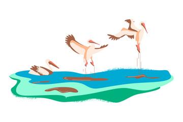 Cartoon pelicans in different poses