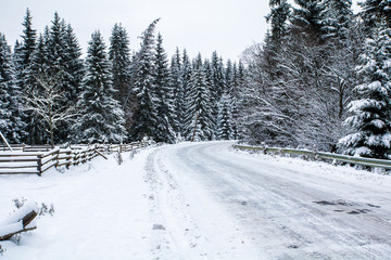 icy road in snow mountains, spruce forest around