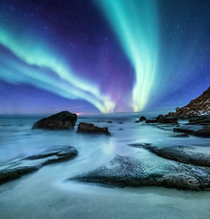 Aurora borealis on the Lofoten islands, Norway. Green northern lights above ocean shore. Night sky with polar lights. Natural background in the Norway